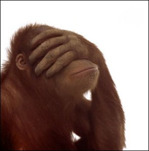 facepalm_monkey
